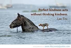 Kindness as a life goal